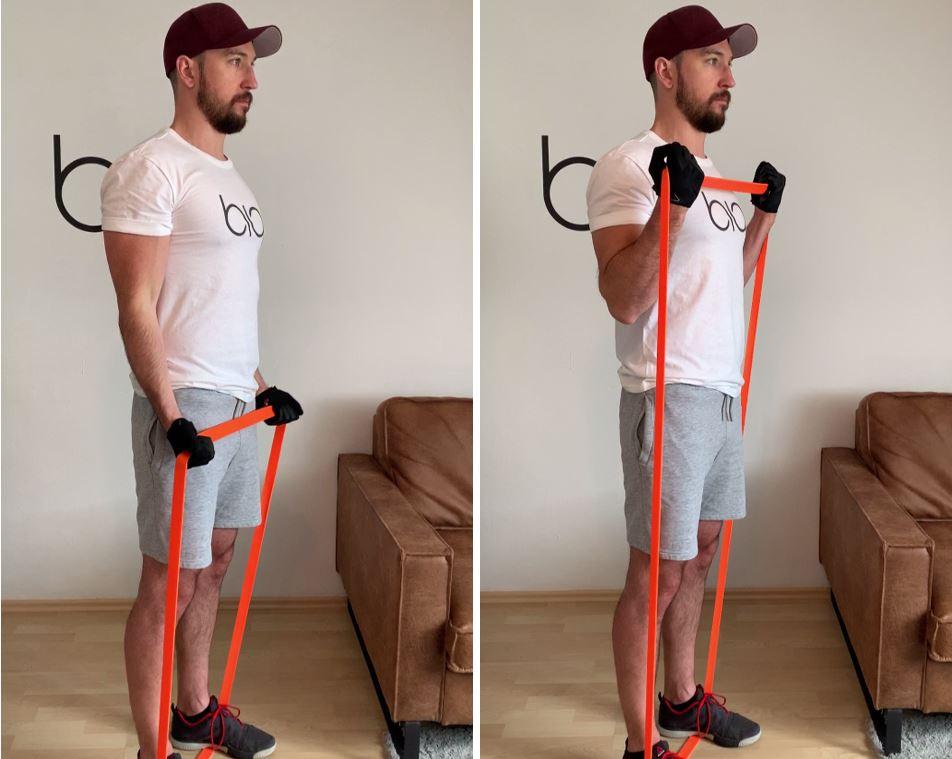 Biceps Standing