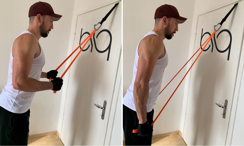 Triceps Pushdown multi